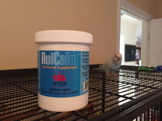 AviCalm for an aggressive budgie