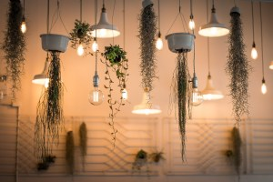 lights, decoration, depth of field