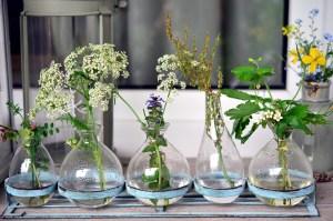 vases, glass, glass vases