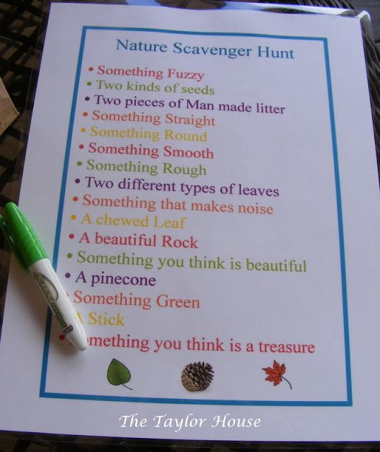 20+ Nature Scavenger Hunt Ideas