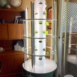 Gardening Made Easy with Tower Gardens