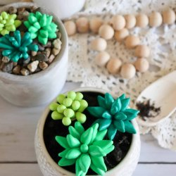 clay succulent plant craft
