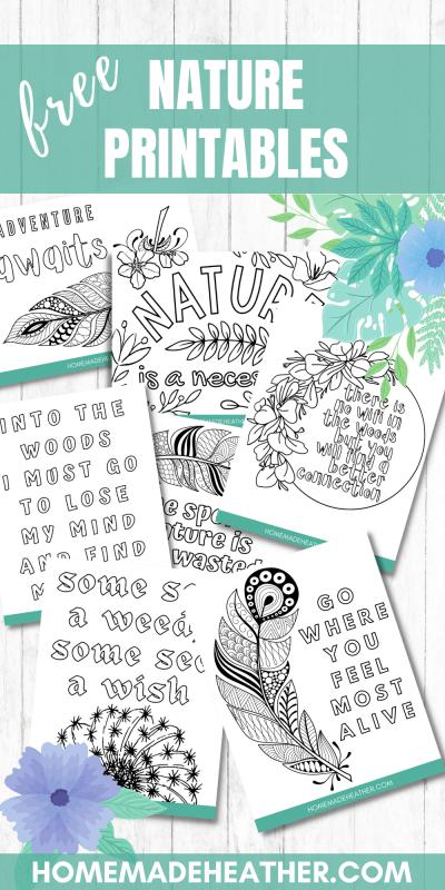 nature printable coloring sheets