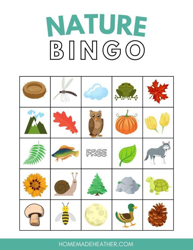 printable nature bingo