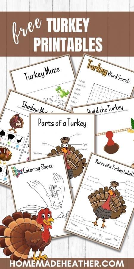 Free Turkey Activity Printables
