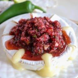 The Best Cranberry Salsa Recipe
