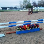 Home Made Jumps Home Made Horse Jumps