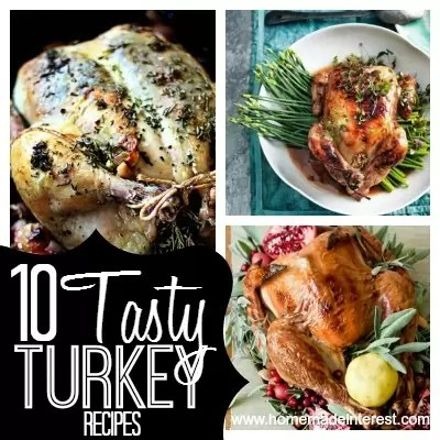 Tired of the same turkey recipe every year? Check out these 10 recipes for turkey. Maybe this year you'll find a new favorite Thanksgiving recipe!