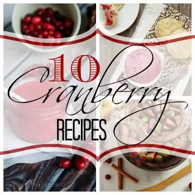 These recipes featuring cranberries are perfect for holidays without being the same boring old cranberry sauce. There are side dishes, main dishes and desserts...there is even cranberry playdough (the kids will love that recipe!).