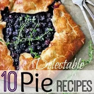 These 10 delectable pie recipes will leave your kitchen smelling like a little slice of heaven. Anyone who loves food will want to add a few of these recipes to their list of things to try! They would be great for Thanksgiving, Christmas....really any time of year!