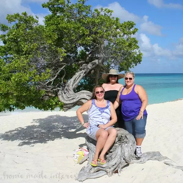 Eagle Beach Divi Tree Aruba