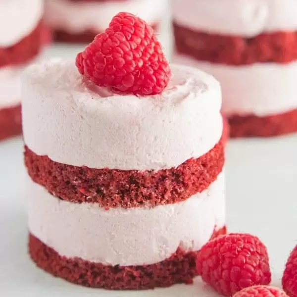 A beautiful mini raspberry mousse red velvet cake with raspberry mousse and red velvet cake layers topped with a fresh raspberry.