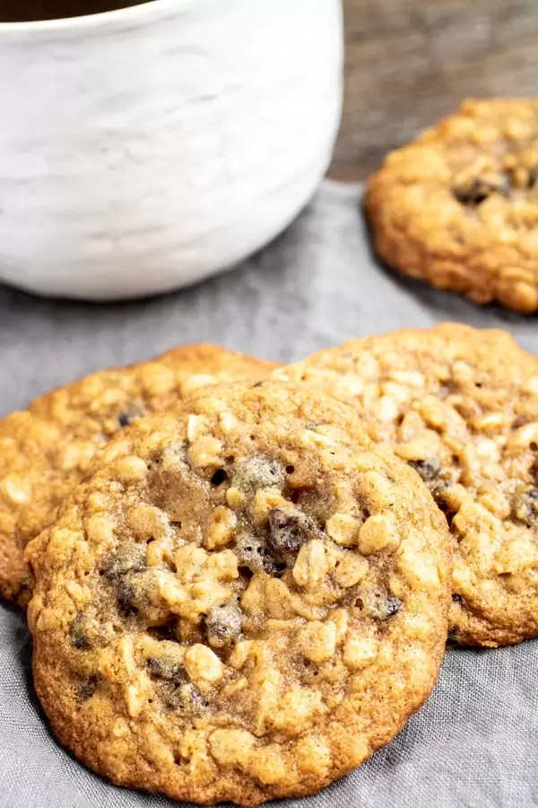 Close up of a chewy oatmeal raisin cookie
