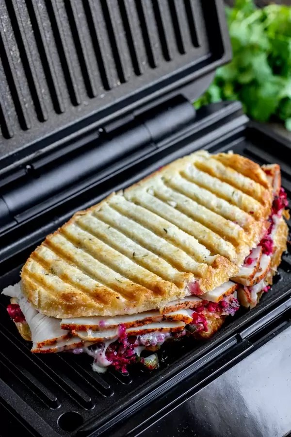 Turkey and cranberry panini freshly toasted with grill marks on bread