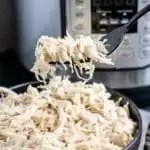 Instant Pot Shredded Chicken on a fork