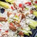 Endive Salad with pecans