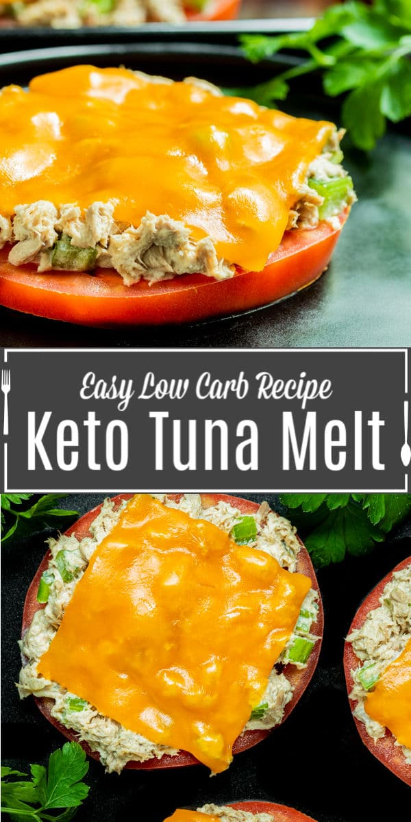 Pinterest image for Keto Tun aMelt with title