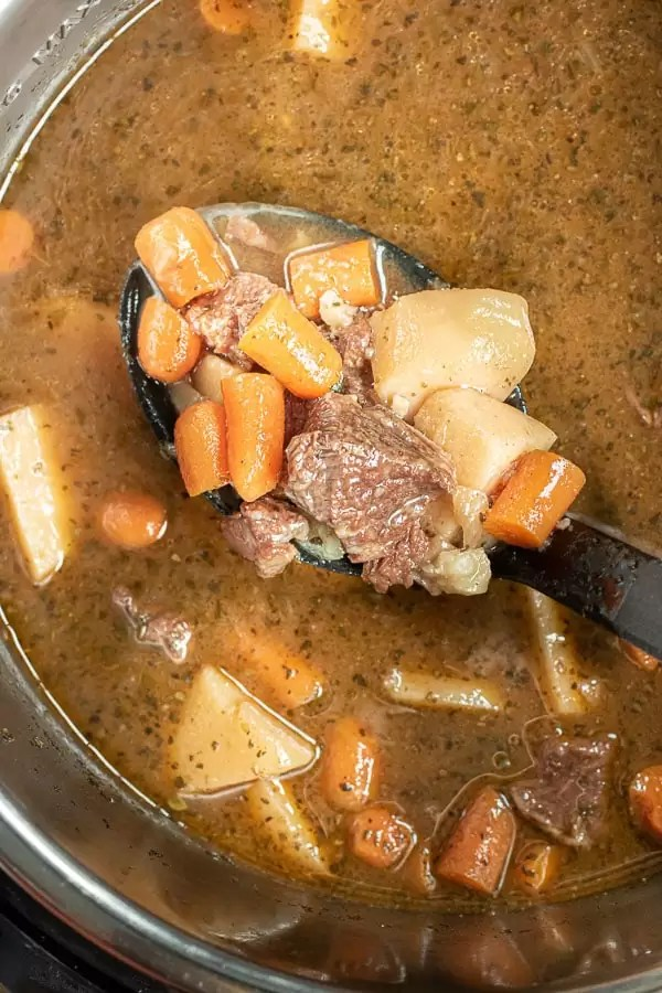 ladle of Instant Pot Beef Stew