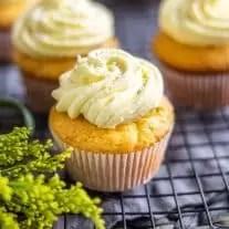 Close up if single lemon cupcake with white sprinkles