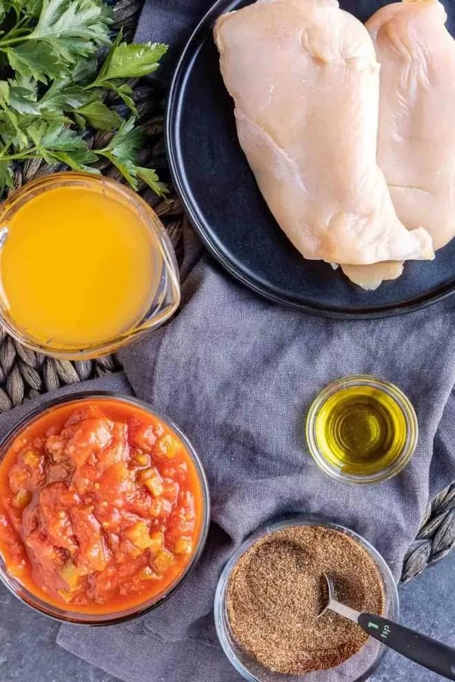 Instant Pot Salsa Chicken ingredients