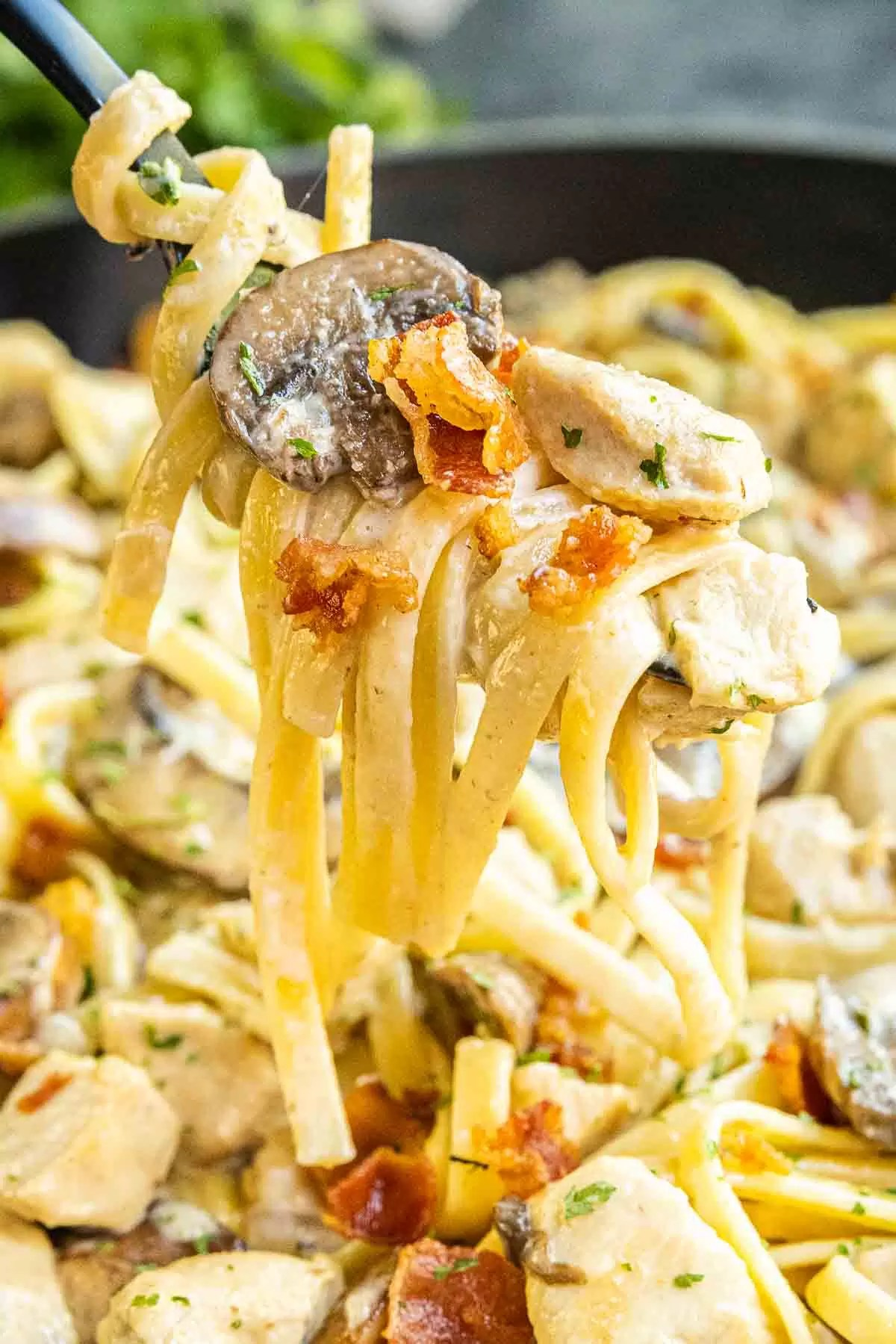 Creamy Chicken and Bacon Pasta rolled on up a fork
