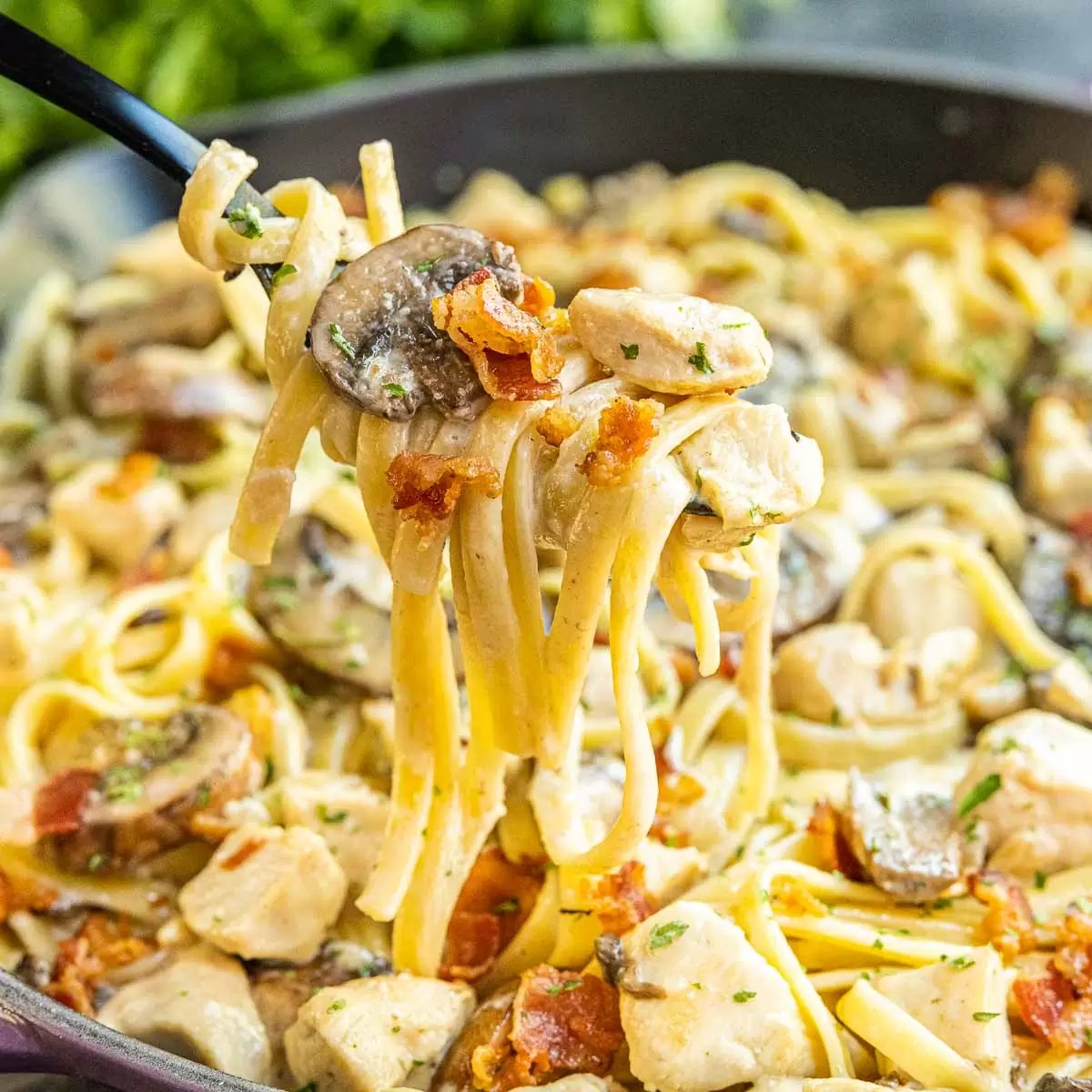 Creamy Chicken and Bacon Pasta on a black fork