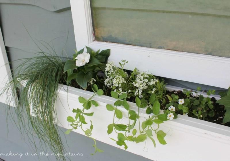 Vintage Window Flower Box