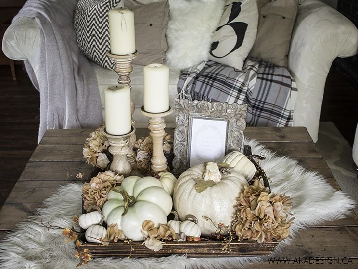 Neutral Fall Coffee Table Decor Ideas