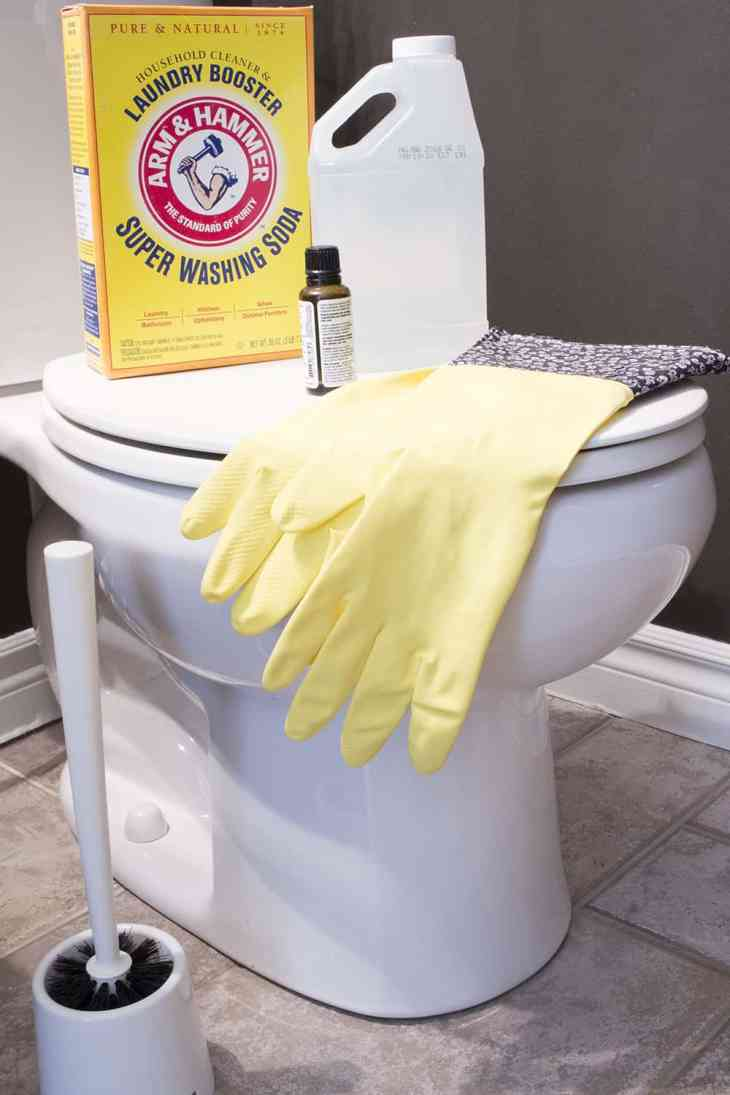 ARM & HAMMER Super Washing Soda Toilet Hack