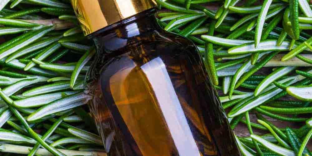 essential oil bottle in winter greens