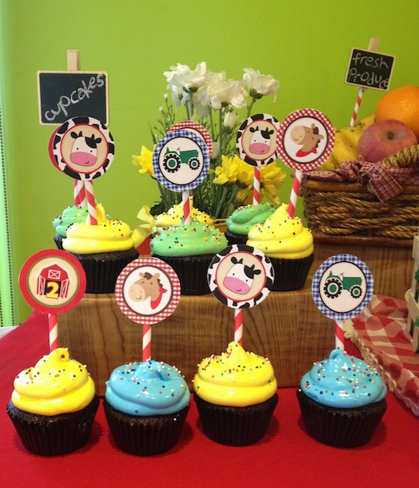 Homemade Parties DIY Party_Barn Party_Liam14