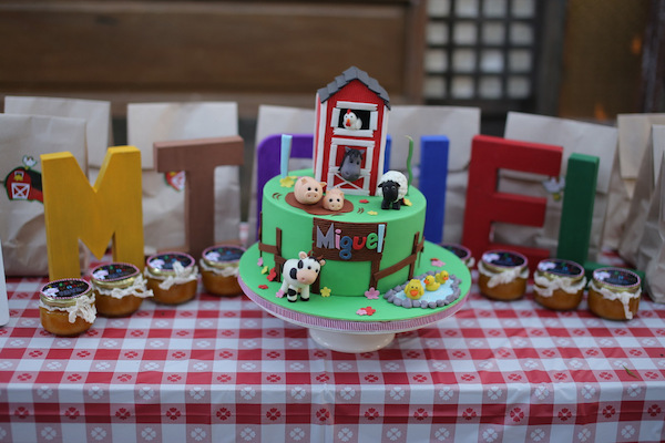 Homemade Parties_DIY Party_Barnyard_Miguel17