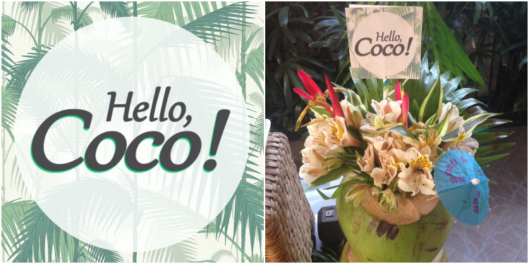 Homemade-Parties_DIY-Party_Tropical-Party_Coco03