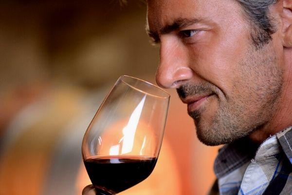 Verdades e mentiras sobre sucos, chás e álcool - Beber vinho todo dia faz bem para a saúde