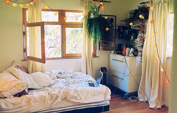 Nature Dorm Bedroom Theme