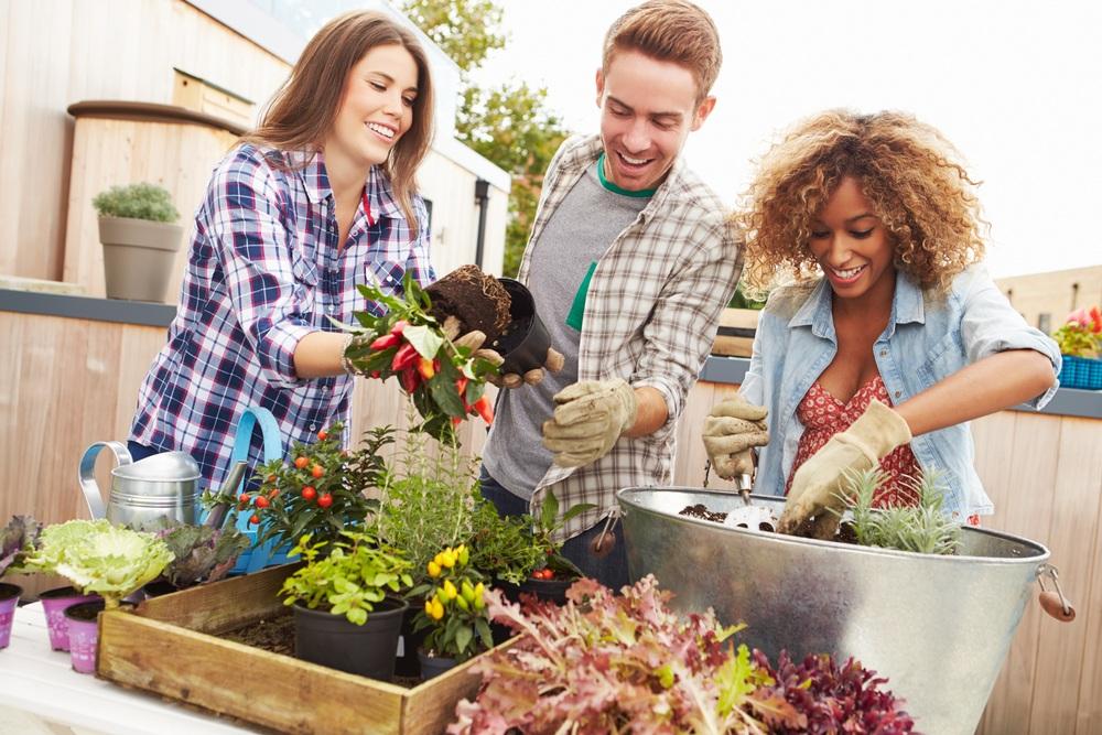Gardening Group