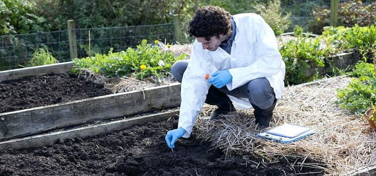 Do A Soil Test