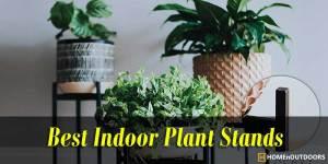 Top 10 Best Indoor Plant Stands 2019 – Excellent Reviews