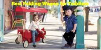 Top 10 Best Folding Wagon for Toddlers – Amazing Reviews 2020