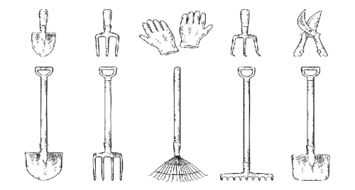 How to Clean and Sharpen Garden Tools