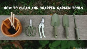 how-to-clean-and-sharpen-garden-tools