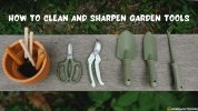 How To Clean And Sharpen Garden Tools – Classic Tips in 2021