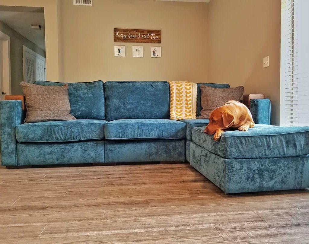lovesac sofa reviews price quality