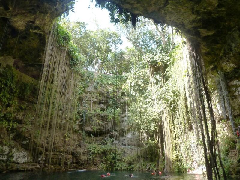 Pure Faszination Erde in der Cenote Ik Kil