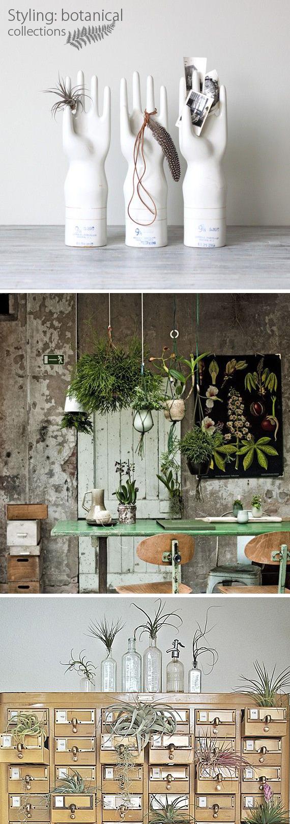 styling_botanicals5