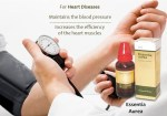 german homeopathic medicine for high blood pressure,Schwabe essentia aurea for BP. Heart toner