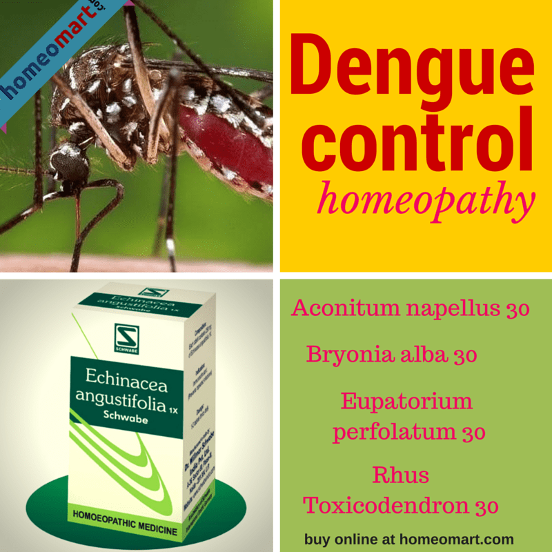 Homeopathy medicine for dengue prevention & treatment, Get