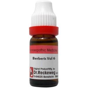 Dr Reckeweg Berberis Vulgaris 3X, 6C, 30C, 200C, 1M, 10M, CM. 11ml