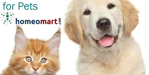 Homeopathic Veterinary Medicines for Pets