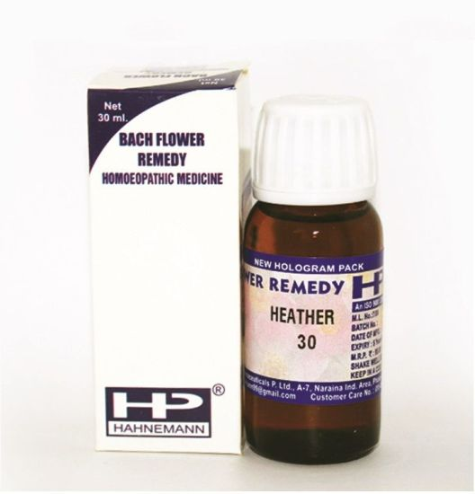 Bach Flower Remedy Heather for Talkative, demand attention, dislike being alone, lonely.